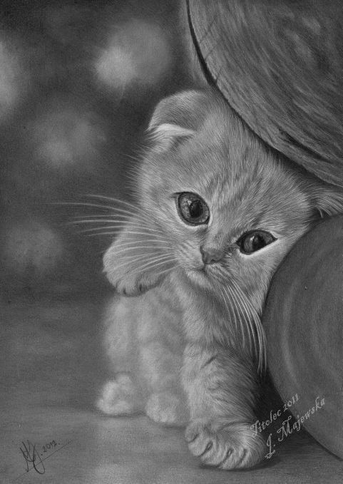 Mocha drawing... by ~titolec87 on deviantART | Animal ...