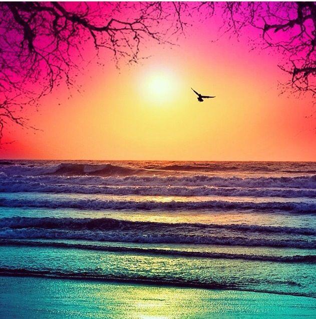 Pin By Morgan Bee On Photoworthy Sunset Nature Ocean Sunset Beautiful Ocean