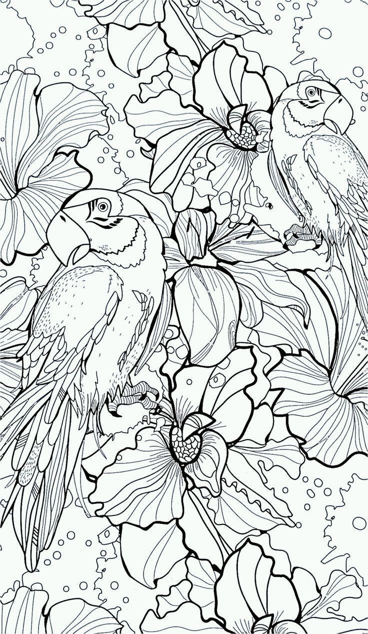 Beautifully Intricate And Ornate Illustration Coloring Books For Adults Are Rising In Popularity With The Art Kleurboek Mandala Kleurplaten Dieren Kleurplaten