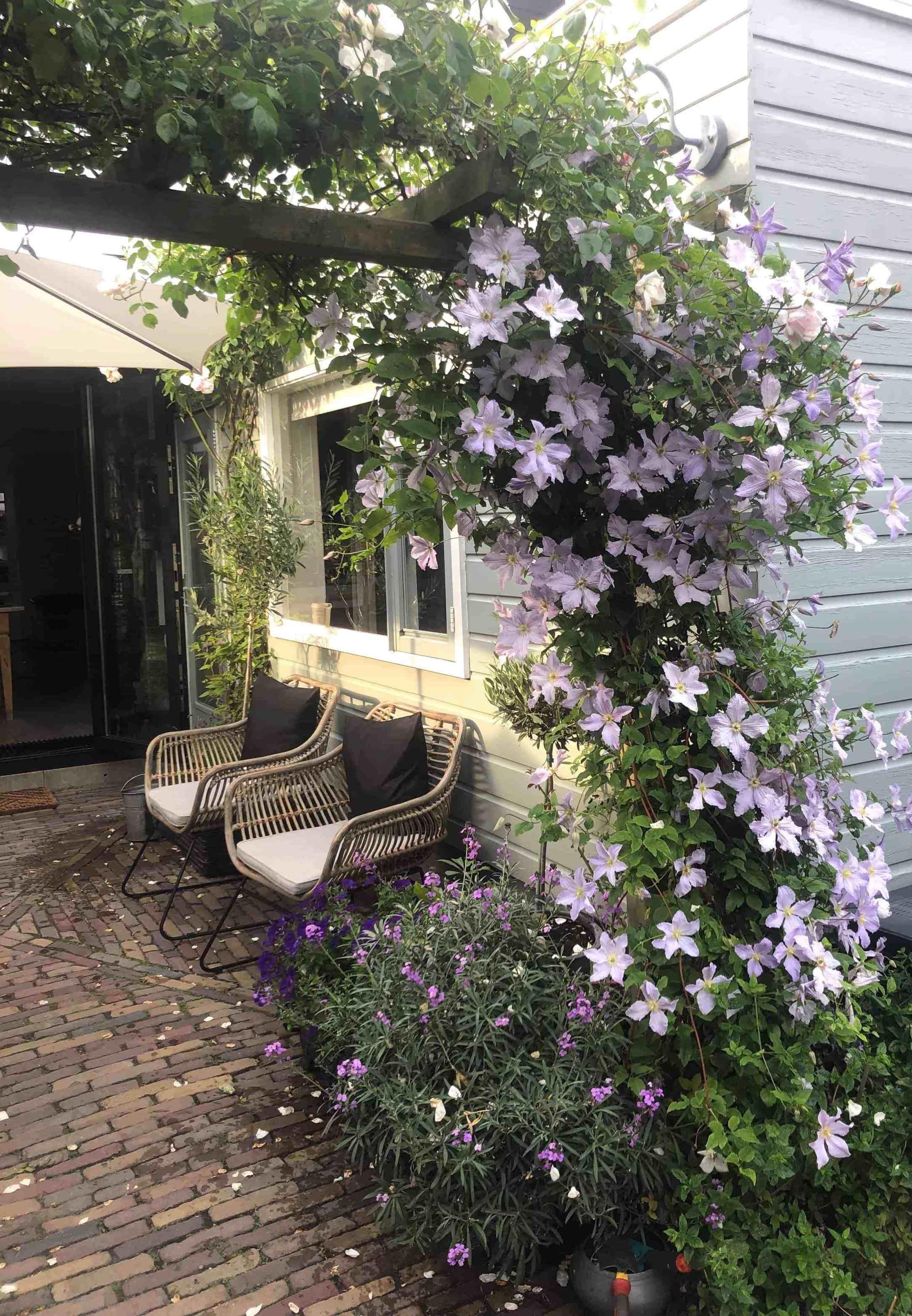 Genieten van mijn tuin & verder helemaal niets - Anita Home Blog