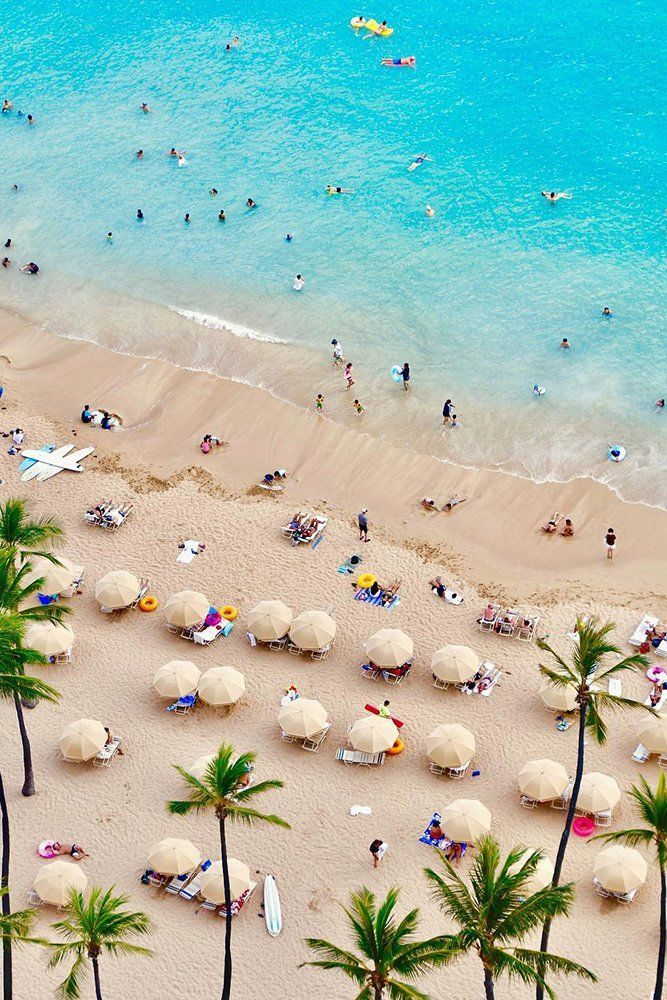 deal from hawaii page travel vacation yellow
