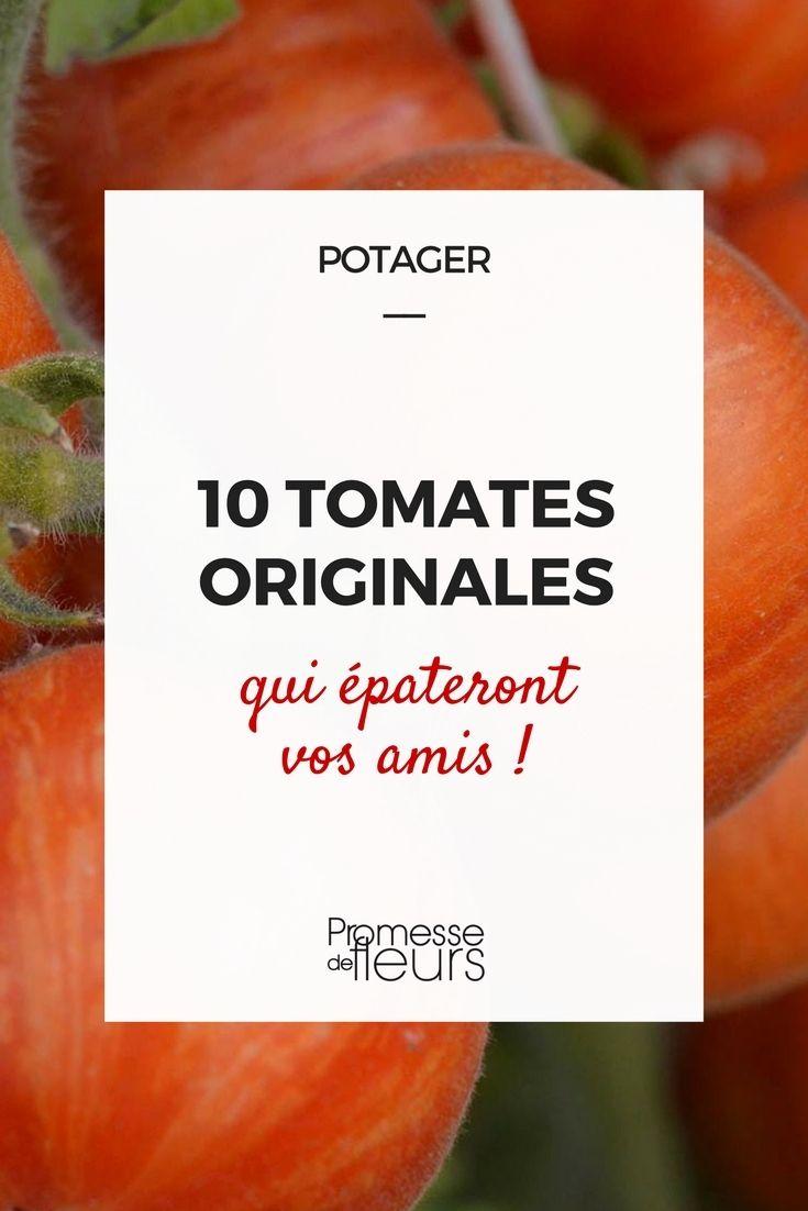 10 tomates rares ou originales qui pateront vos amis jardin pinterest jardins potager et. Black Bedroom Furniture Sets. Home Design Ideas