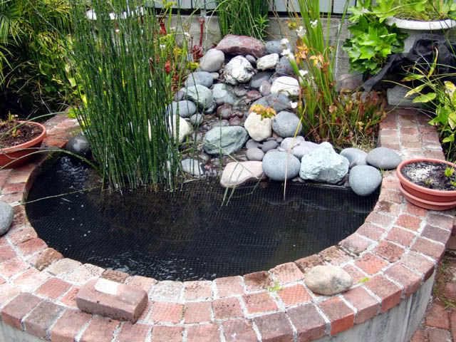 Need filtration advice for 500 gallon pond ponds for Make your own pond filter box