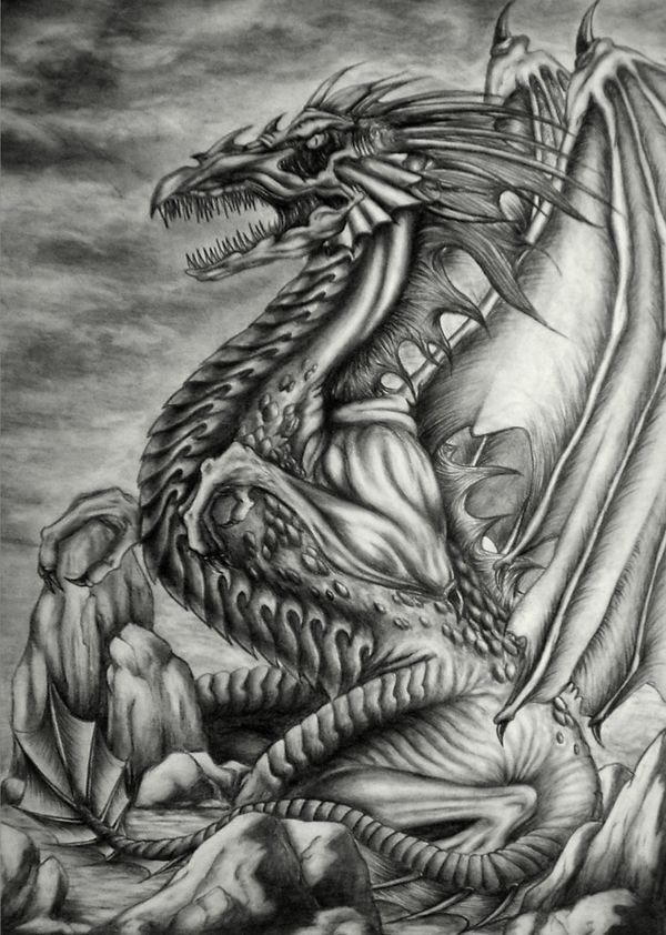 Excellent pencil drawings of dragon pencil drawings of dragon excellent pencil drawings of dragon ccuart Choice Image