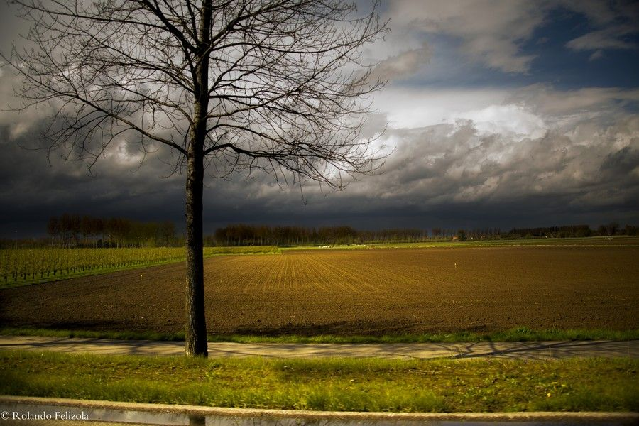 Solitude by Rolando Felizola on 500px