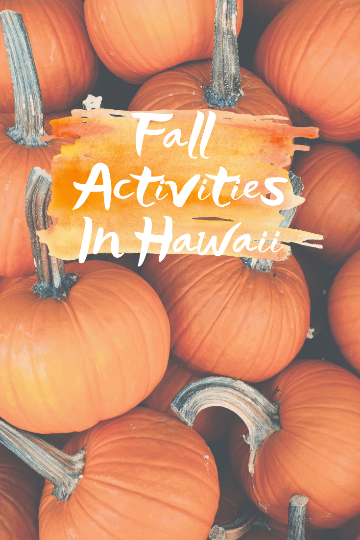 Best Halloween Oahu 2020 Fall Activities In Hawaii   Sharing all the best fall activities