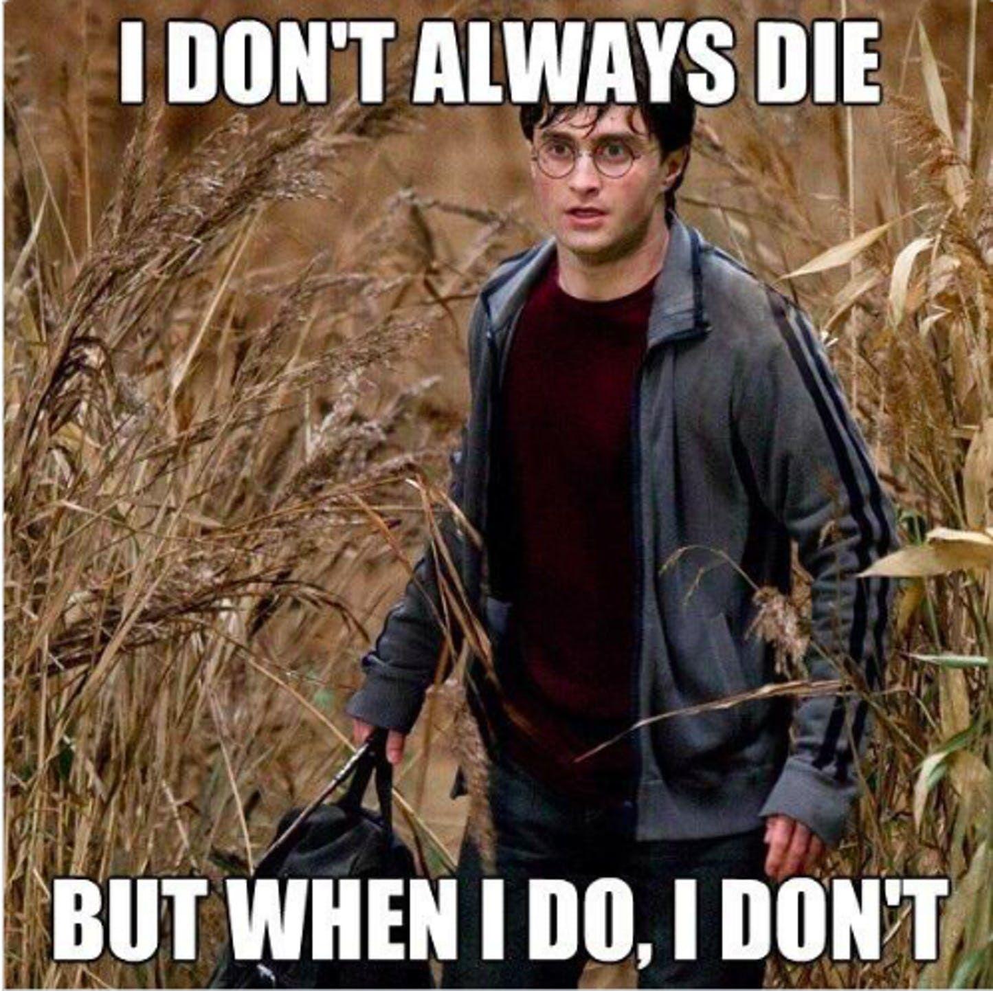 15 Hilarious Harry Potter Memes Only True Fans Will Understand Harry Potter Puns Harry Potter Memes Hilarious Harry Potter Universal