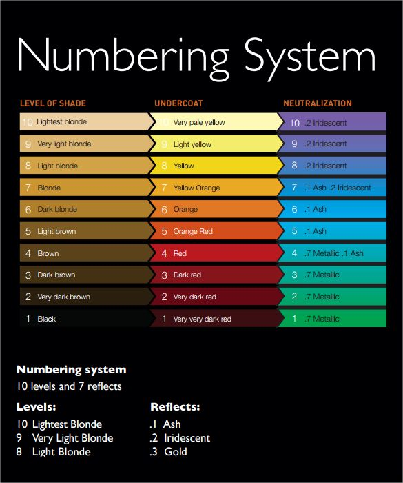 11+ Hair Color Chart Templates u2013 Free Sample, Example, Format - sample general color chart