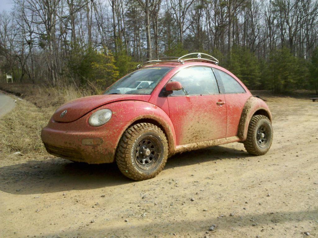 New Beetle Baja - NewBeetle org Forums | Bugs | Baja bug