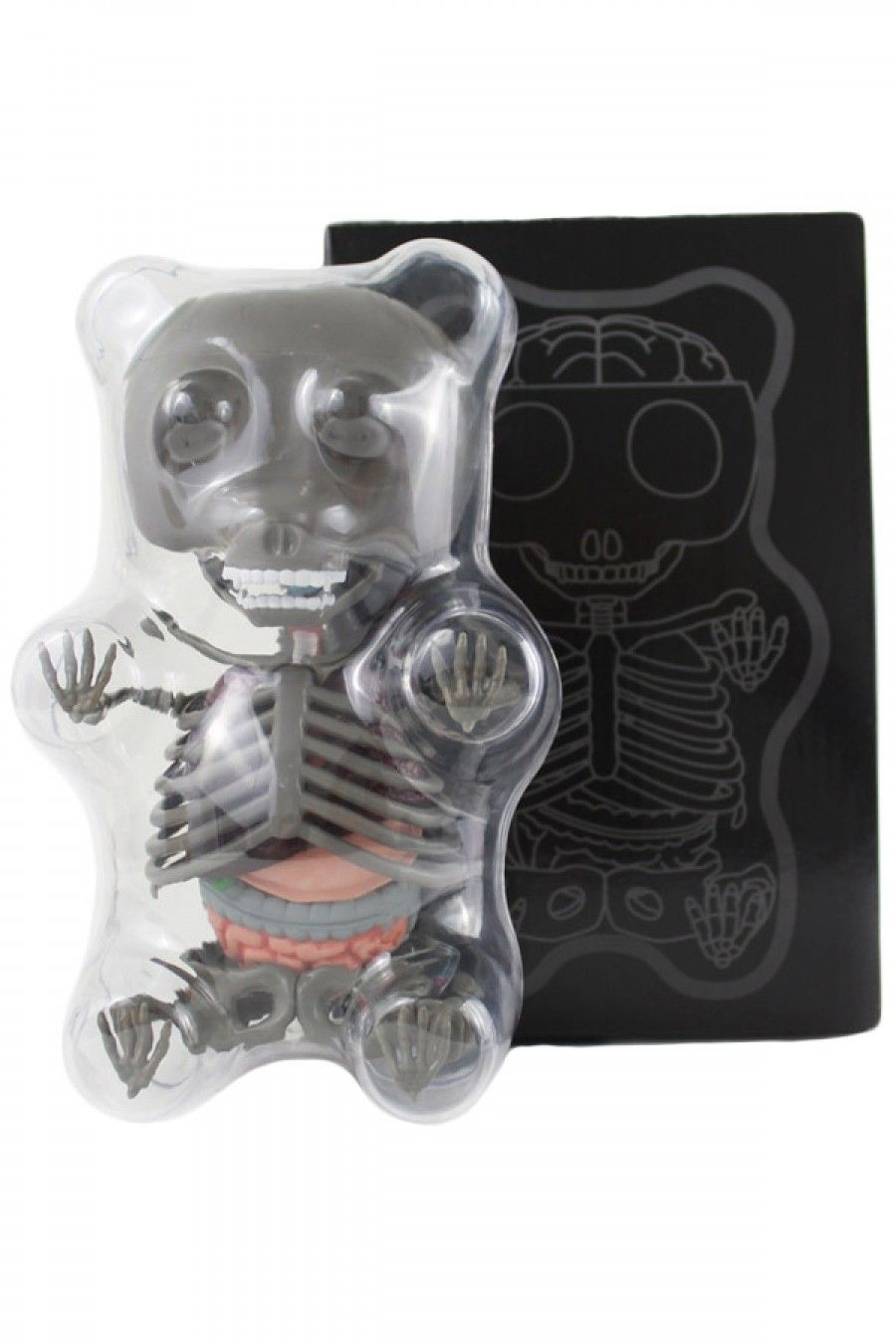 Colorful Anatomy Of A Gummy Bear Images - Human Anatomy Images ...