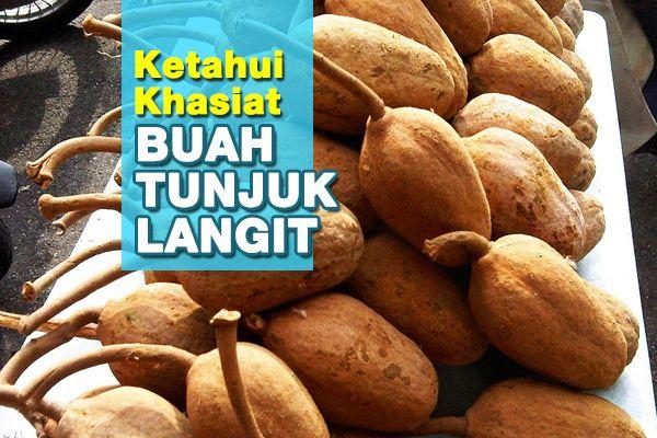 Khasiat Tersendiri Buah Tunjuk Langit | http://www.wom.my/kesihatan/petua-pemakanan/khasiat-buah-tunjuk-langit/