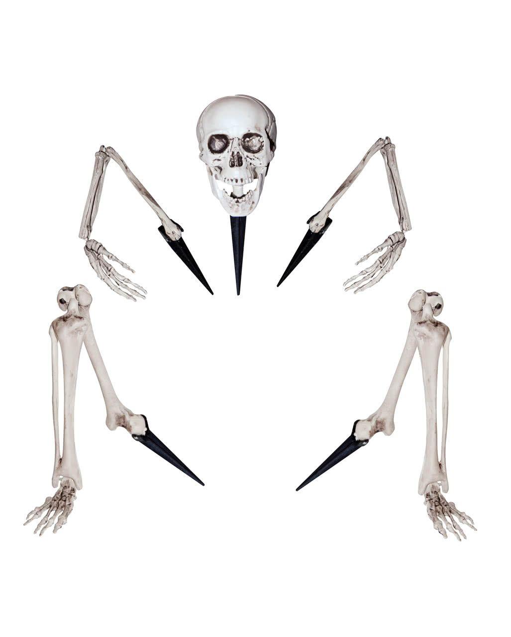 Halloween Deko Shopch.Skelett Knochenteile Fur Den Garten Halloween Deko Horror Shop Com Halloween Deko Halloween Deko Horror Halloween Deko Gunstig