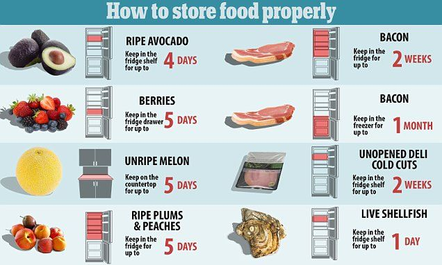 how to store food properly so it doesn 39 t go off food