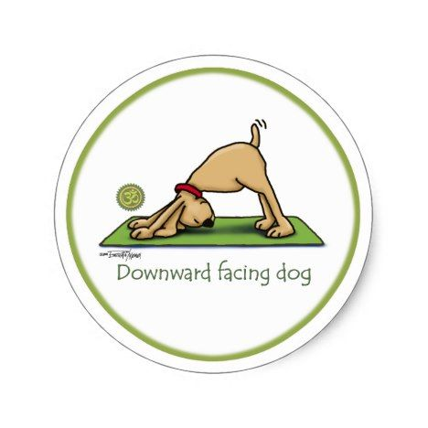 downward facing dog  yoga stickers  zazzle  bikram