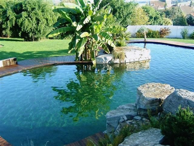 ideas de piscinas naturales y sostenibles bohemian and chic exteriores pinterest swimming pools and swiming pool