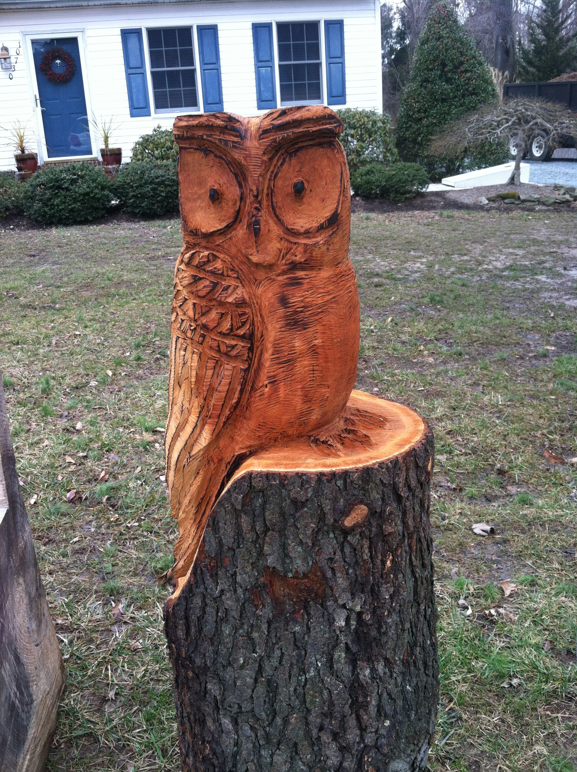 Chain saw carved owl art wood pinterest