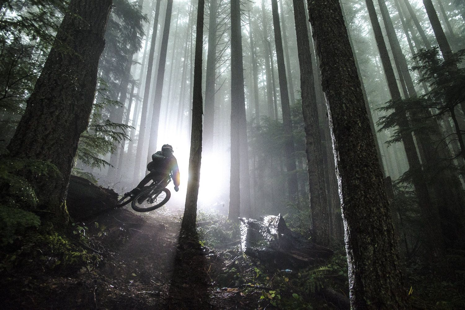 This 100 Second Video Will Make You Want To Ride Camera Lenta
