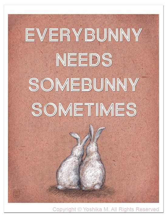 everybunny needs somebunny sometimes