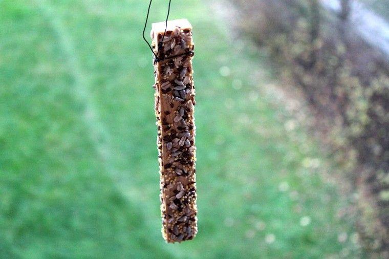 Pečujte o zvířátka v zimě a vyrobte pro ptáčky jednoduché krmítko.