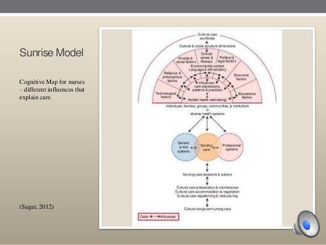 Transcultural Nursing Powerpoint Presentation/Dr  Madeleine