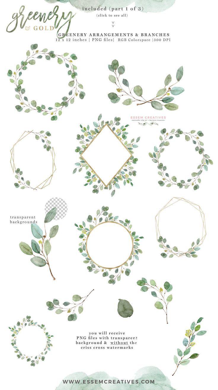 Watercolor eucalyptus wreath clipart Eucalyptus green leaves floral frame logo greenery wedding boho clipart Eucalyptus wedding invitation