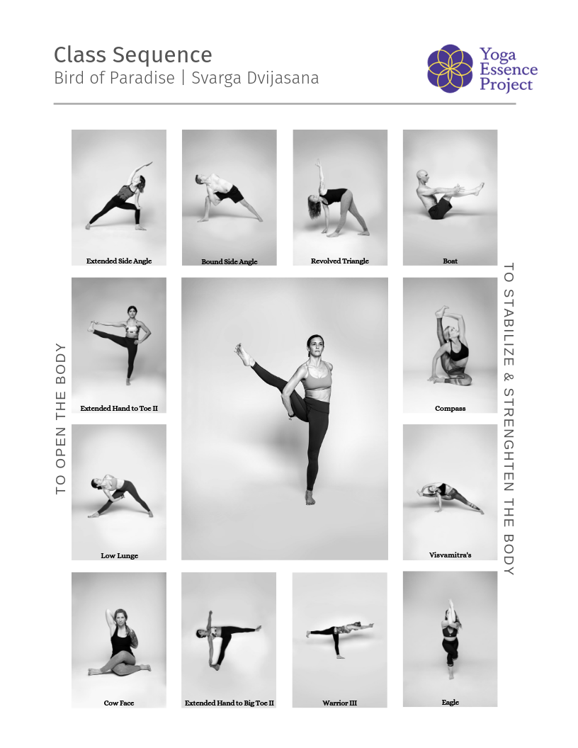 Bird Of Paradise Yoga Sequence
