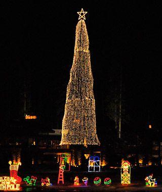 America S Tallest Christmas Trees Tall Christmas Trees Coeur D Alene Coeur D Alene Resort