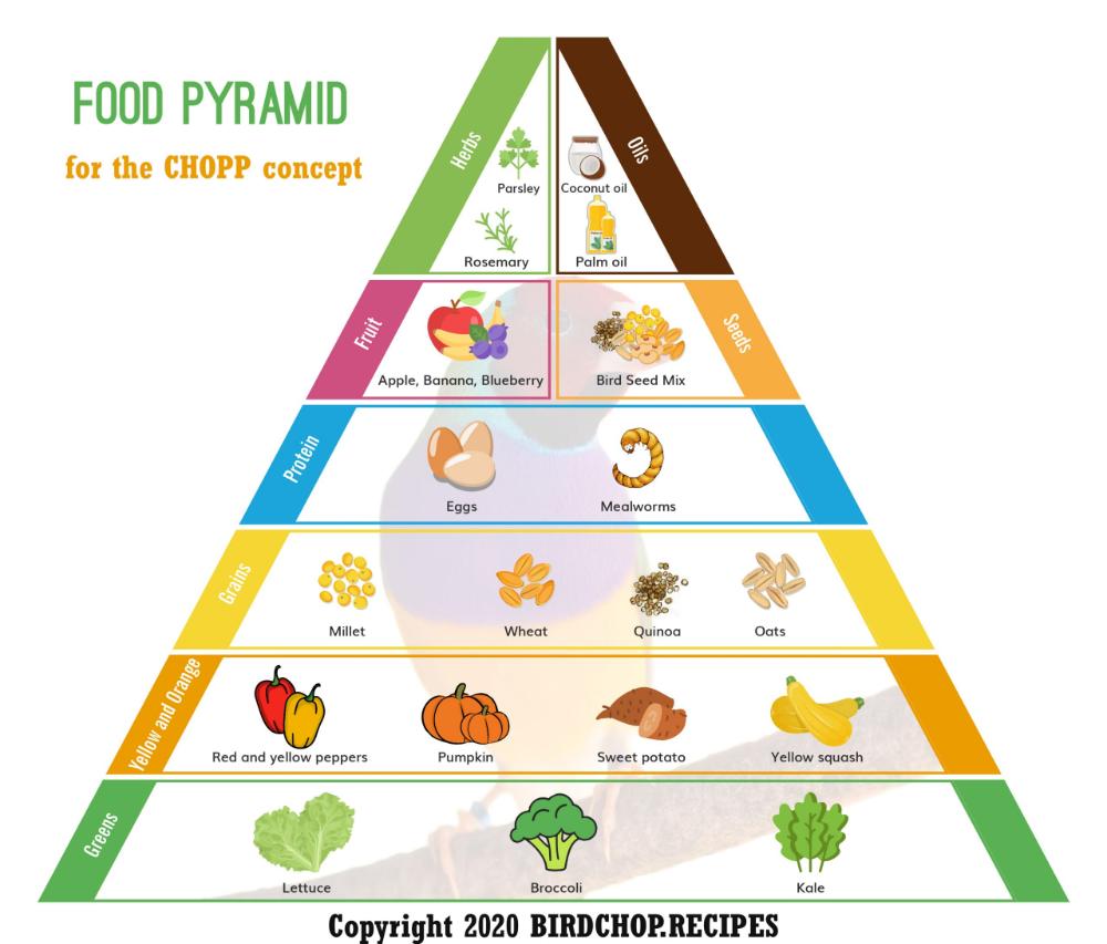 dr goldian diet plan