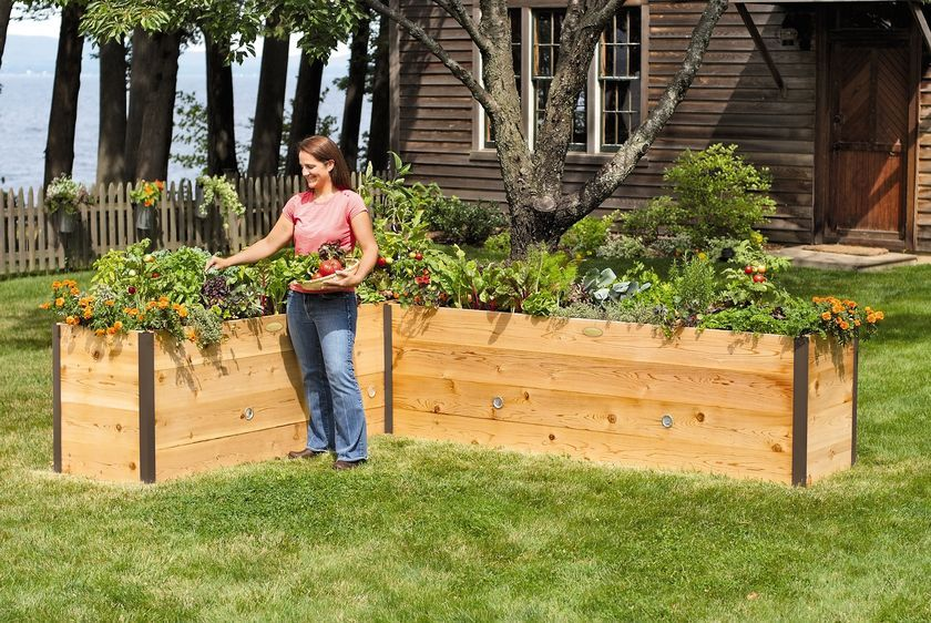 Elevated Cedar Raised Bed   How Can We Create This Using The Existing Lower  Beds?