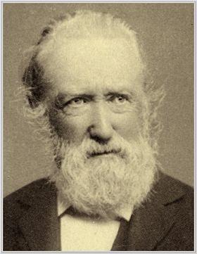Theodor Storm Vintage Beard Epic Beard People Art