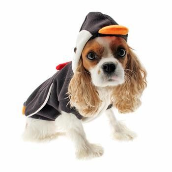 Penguin Dog Costume Pet Costumes For Dogs Cute Dog Costumes