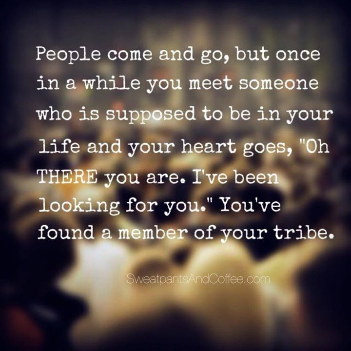 There You Are Quotes Friendship Tribe Quotes Friendship Quotes Friends Quotes