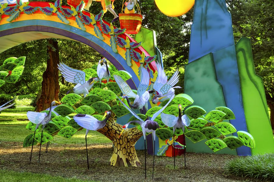 Kaleidoscope Garden, St. Louis, Missouri, USA | Travel FUN ...