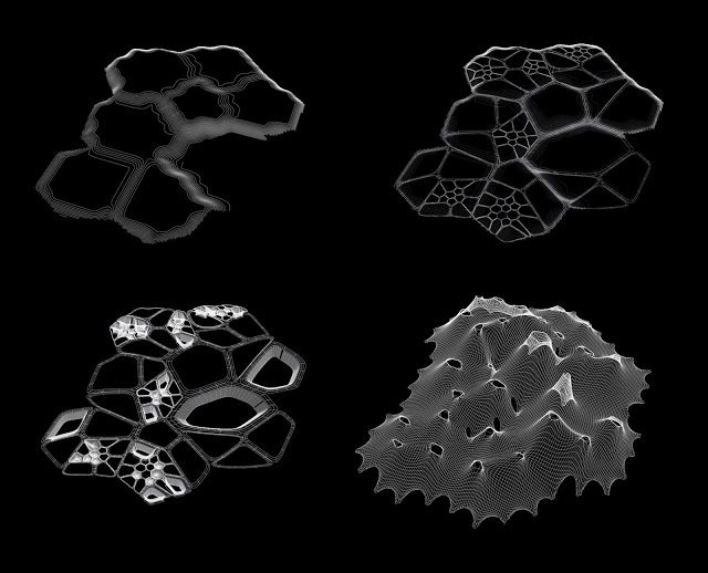 hybridbiostructures: 2012-01-22