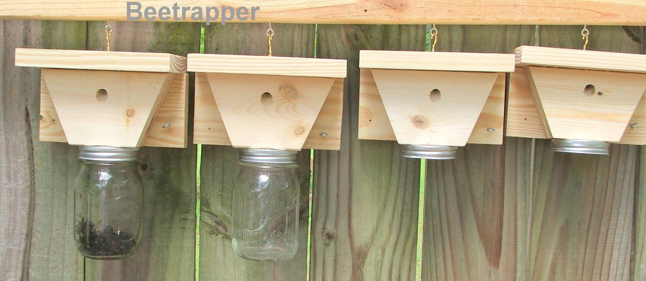 4 carpenter bee traps bee and pest control handcrafted