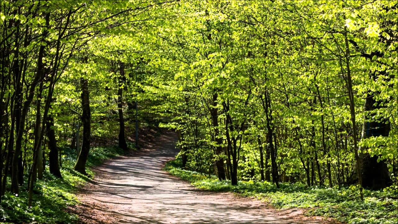 #Abraham Hicks 2015 ペ The Path of Least Resistance