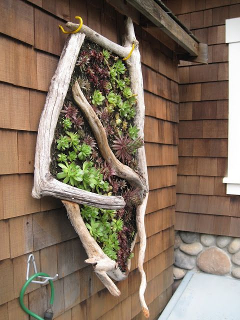 Outdoor Wall Decor Ideas With Wood Plants And Lights Vertical