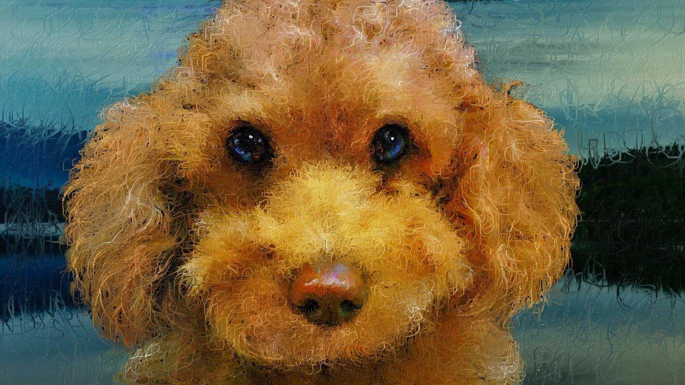久しぶりに愛犬ティアモをお絵描きしました、写真との比較はどうでしたか?、以外に細かくお絵描きしているでしょう、これからも愛犬ティアモの作品をよろしくお願いします!!  BRAZILのヒット曲ですが、4時間と長いので時間の有る時BGMとしてブラジル音楽をお楽しみください。 As Melhores Músicas Brasileiras de Todos os Tempos http://youtu.be/3ZgClEJ1Tq8