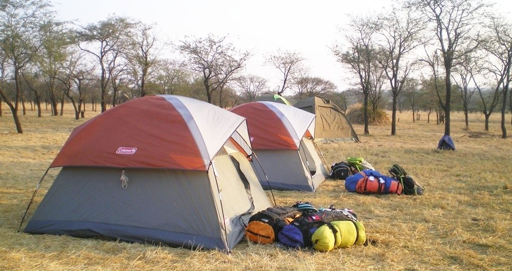 African safari is once in a lifetime experience, there are hot destinations of ... you can spend the day in safari camps. http://rwandasafariholiday.com/