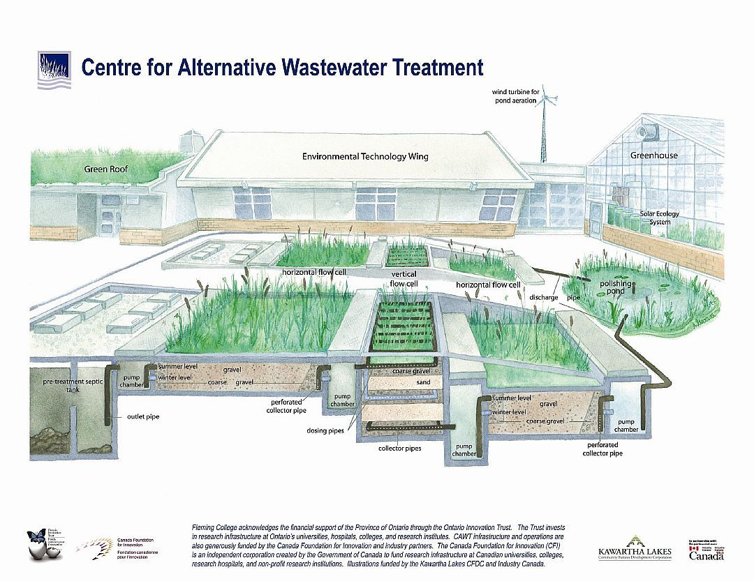 Constructed Wetlands Design Google Search Constructed