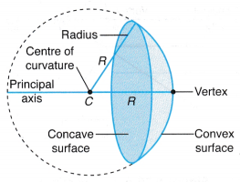 What Are Concave And Convex Mirrors Physics Classroom Physics