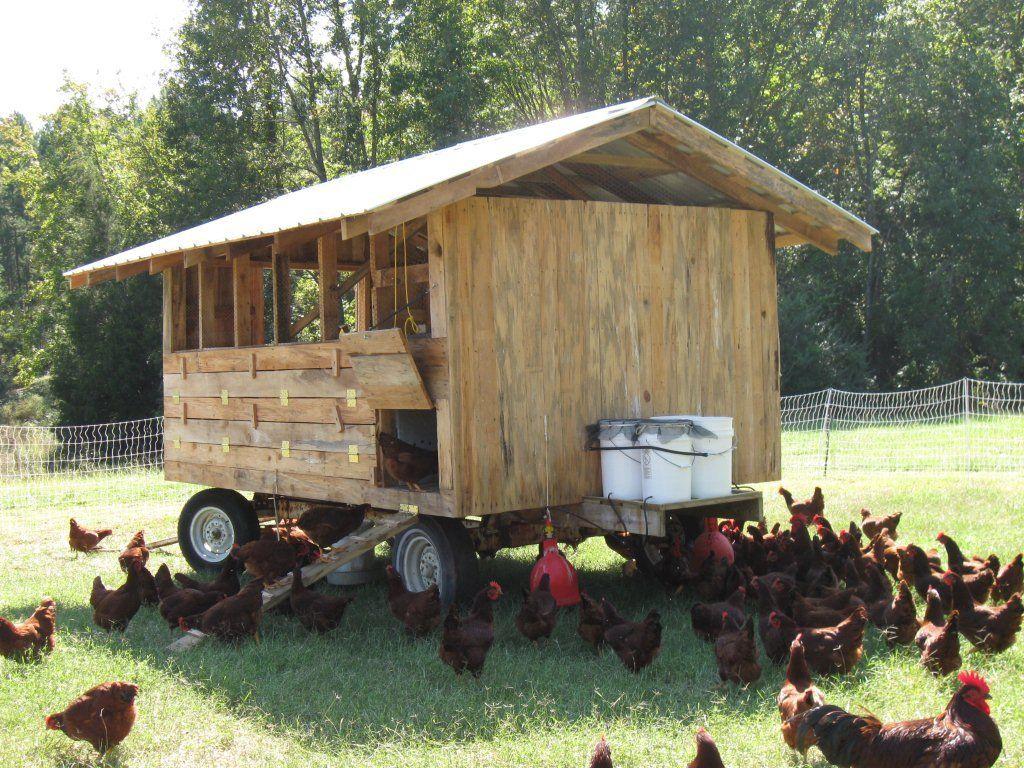 Image result for joel salatin mobile chicken coop