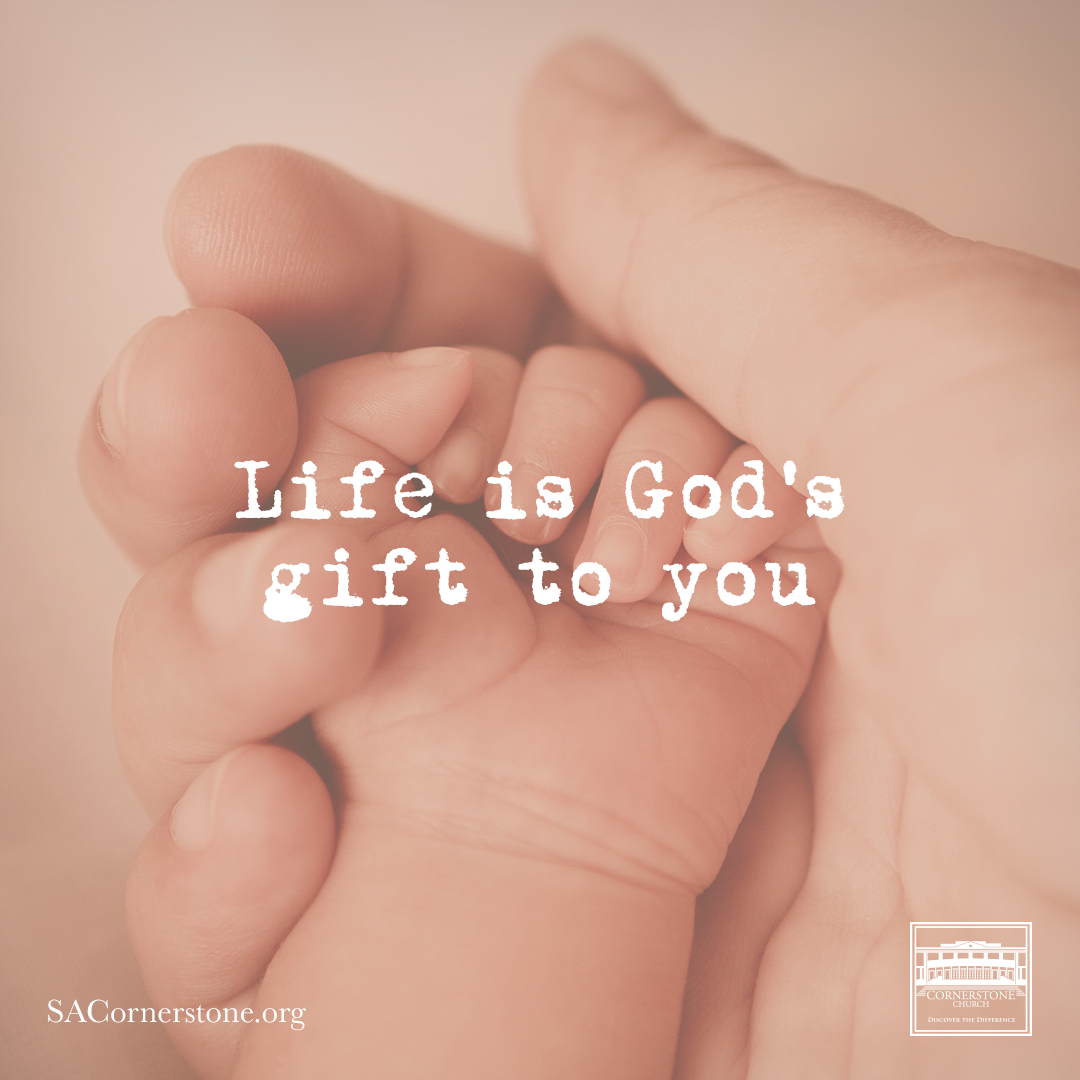 God Has Blessed Us With New Life In Christ Just As A Baby