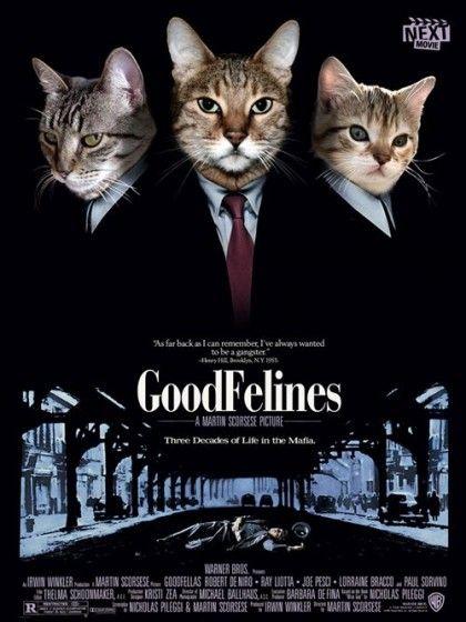 Good Felines Movie Poster Katzen Poster Katze Lustig Hubsche Katzen