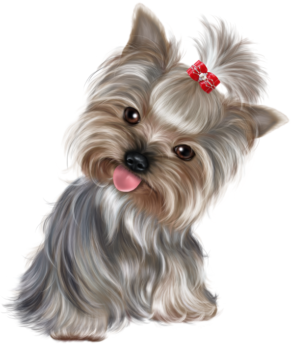 Chiens Dog Puppies Wallpapers Dessin De Chien Dessin Chien