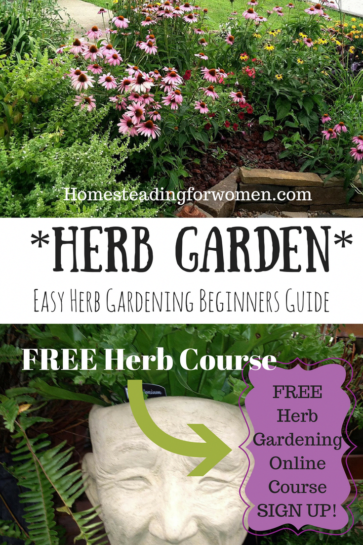 Easy Herb Gardening Beginners Guide. FREE 10 Day eCourse ...