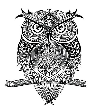 vector hand drawn owl sitting on branch black and white zentangle art ethnic patterned. Black Bedroom Furniture Sets. Home Design Ideas