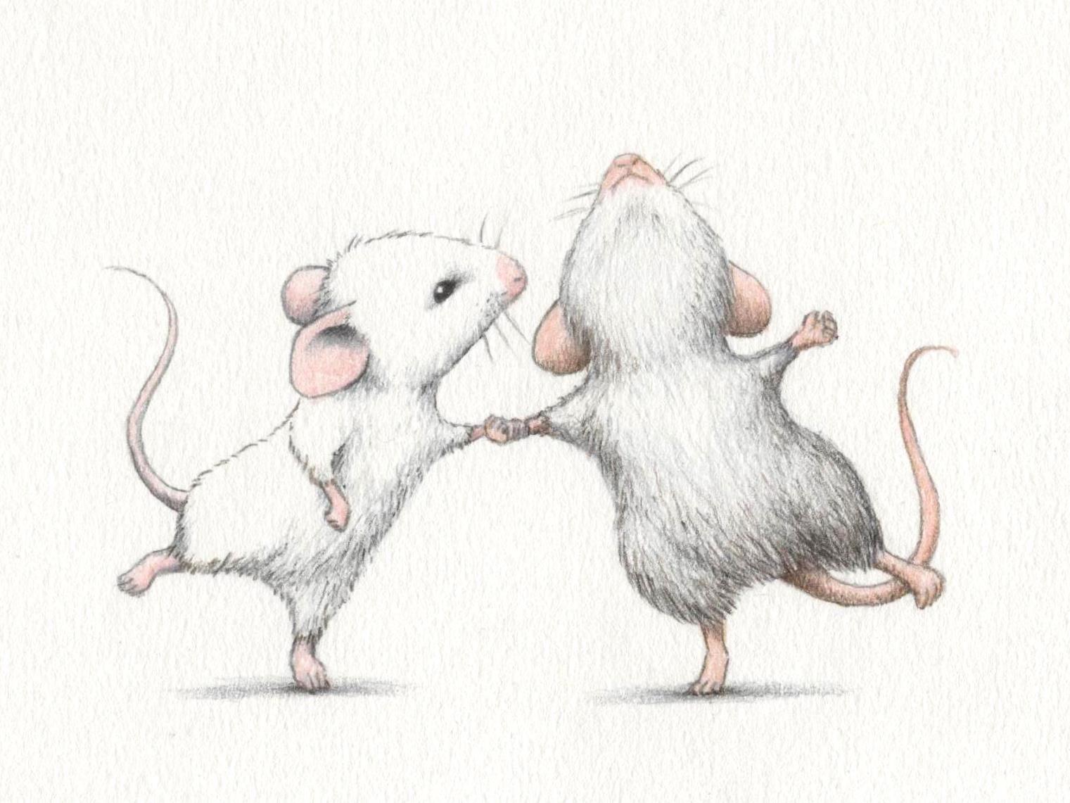 Мыши смешные рисунки