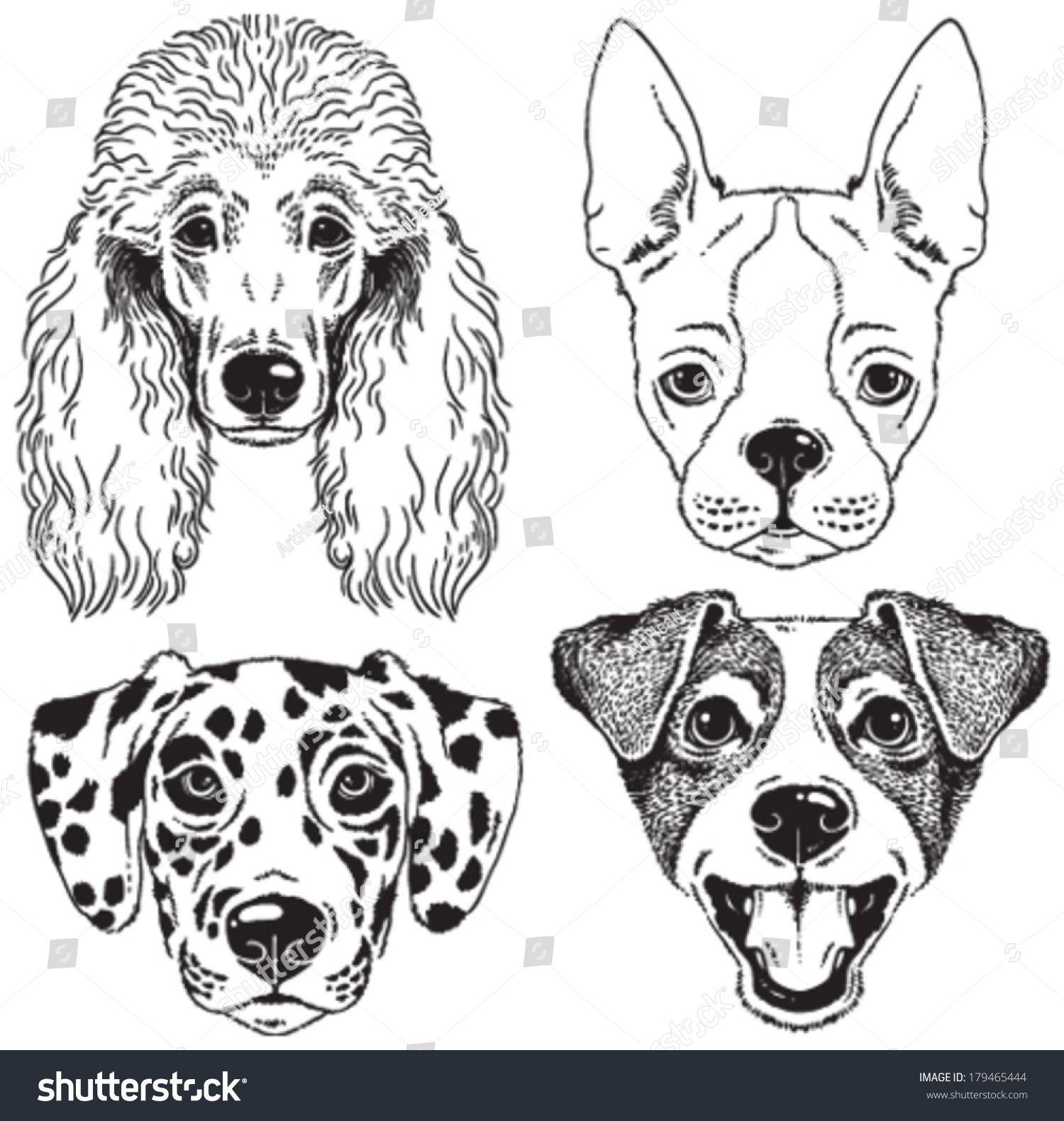 A Set Of 4 Dog S Faces Poodle Boston Terrier Dalmatian