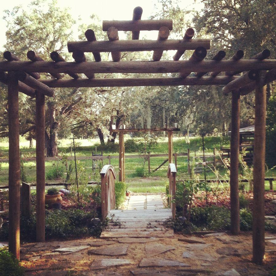 Venue Harmony Gardens 5528 Aragon Avenue Deleons Springs Fl 32130 Visits By Appointment Only 386 Dream Wedding Locations Wedding Pergola Pergola